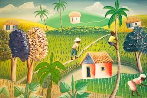 L'exposition biblique à Haïti nous aide à «reconstruire une nation détruite »